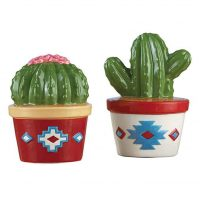 Cactus Southwest Kitchen Decorations Salt and Pepper Shaker Set